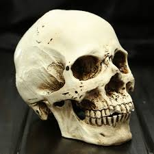 solar powered halloween decorations halloween small human skull replica scary horrible halloween