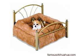 best designer small dog bed the petmate nap of luxury pet bed
