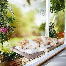 cat beds u0026 furniture spiffy pet products