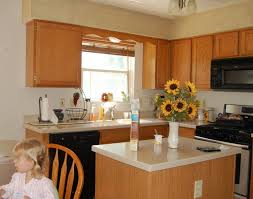 Kitchen Cabinet Doors Canada Kitchen Cabinet Door Depot Canada Amazing Home Depot Kitchen