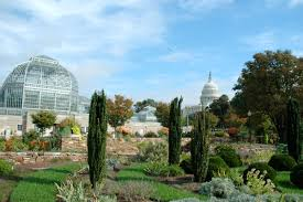 What Time Does The Botanical Gardens Close by Things To Do Near Capitol Hill Washington Dc