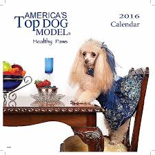 dog coffee table books dog coffee table book unique will your pooch be the next america s