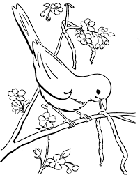 bird eating caterpillar coloring pages birds coloring pages