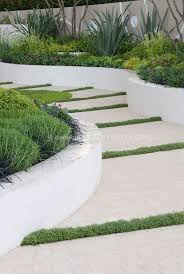 garden path with raised white wall beds and thymes in crevices in