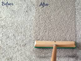 Make Rug From Carpet My Secret Weapon That Picks Up More Dog Hair Of Decorating