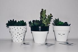 diy flower pots danielle willis