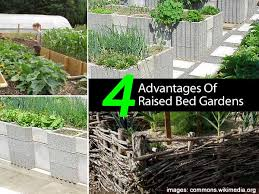 when to garden in raised beds 5 conditions