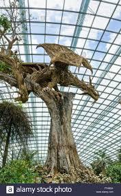 wood sculpture singapore singapore gardens bay sculpture stock photos singapore