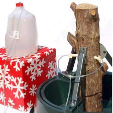 christmas tree i v intravenous watering system for cut real
