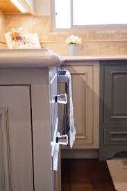 cuisiner une perdrix cuisine cuisiner une perdrix avec noir couleur cuisiner une
