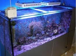 Aquarium Led Light Led Aquarium Lights Led Grow Light Hydro Blog