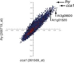 co correlation scatter plot the r values for all genes against two