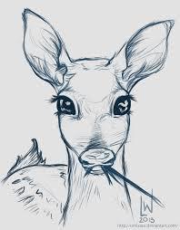 deer fawn sketch by umisaru on deviantart