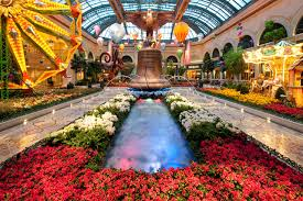Botanical Gardens In Las Vegas Bellagio S Conservatory And Botanical Gardens Review Exploring