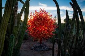 Scottsdale Az Botanical Gardens Desert Botanical Garden Hosts Glass Sculpture Exhibit By Dale