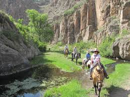 horseback riding in the gila national forest new mexico travel