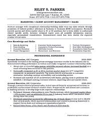 Senior Accounting Professional Resume Resume Executive Financial Technology Susan Ireland Resumes