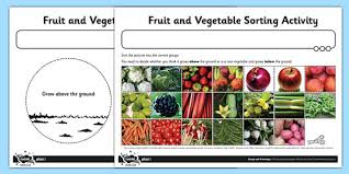 fruit and vegetable sorting activity sheet fruit vegetable