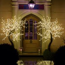 2m led cherry trees framing an entrance light design
