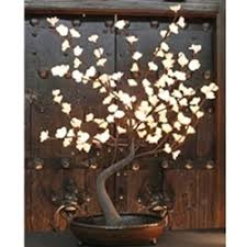 Lit Branches 7 Best Japanese Bowls Images On Pinterest Japanese Rice Bowl