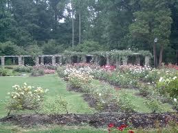 Raleigh Botanical Garden Raleigh Garden Favorite Places Spaces Pinterest