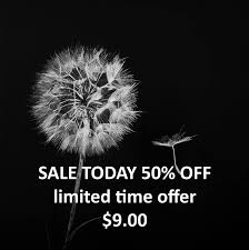 fine art photography dandelion print black and white home decor