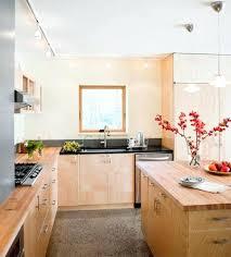 Living Room Light Fixture Ideas Great Light Fixtures Living Room Lighting Track Houzz Design Ideas