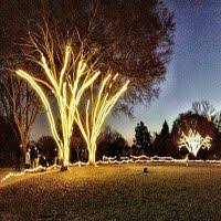 42 best rope light ideas images on rope lighting