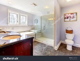 lavender bathroom tjihome