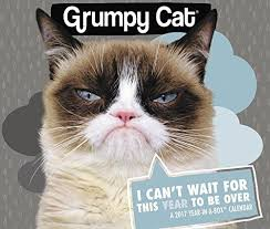 grumpy cat wrapping paper grumpy cat year in a box calendar 2017 kittymews cat news from