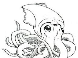 squid drawing pictures images u0026 photos photobucket