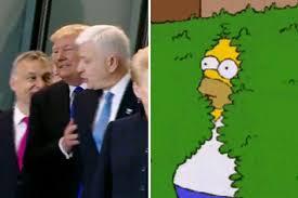 Homer Simpson Meme - trump shoving prime minister backwards is homer simpson gif