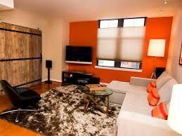 bedroom engaging orange living room furniture dpcortes tropical
