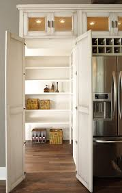 Kitchen Cabinet Pantry Ideas by Stunning Closet Pantry Design Ideas Contemporary Home Design