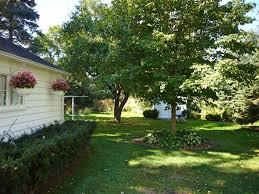 3420 roosevelt street saint anthony mn brightsky homes