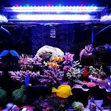 Reef Aquarium Lighting A251m 15w 25cm 5730 45smd 1900lm Led Coral Sps Lps Aquarium Sea