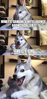bad pun dog what s canada s intelligence agency called the c i