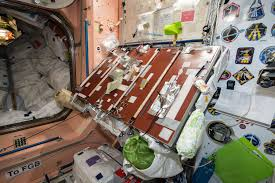 is thanksgiving only celebrated in america expedition 50 crew to celebrate thanksgiving aboard space station