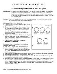 cell division and mitosis worksheet the best and most