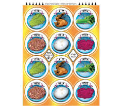 what is on a passover seder plate passover seder plate stickers ajudaica