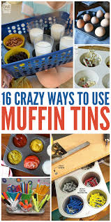 16 crazy ways to use muffin tins crazy houses muffin and house