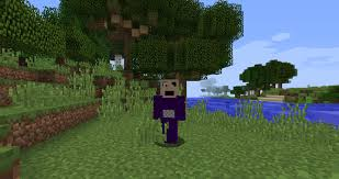 Minecraft Flag Tinky Winky Five Nights At Tubbyland Minecraft Skin Mods