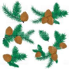 pine cone christmas decoration stock vector art 622916384 istock