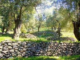 21 best rocks and walls images on pinterest rock wall dry stone