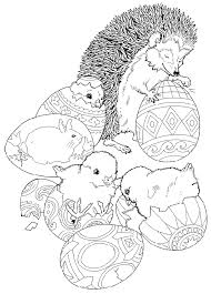 mammals coloring pages hedgehog coloring pages coloring 4 pinterest hedgehogs