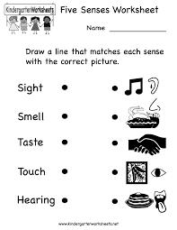 kindergarten five senses worksheet printable teaching ideas