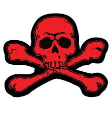 skull crossbones samolepka