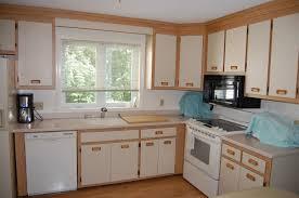 Chalk Paint Kitchen Modern Kitchen Interior Designs Varnished - Paint for kitchen cabinet doors