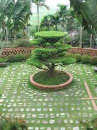 Small N Rooftop Our Small Garden Design India Ideas N Home S