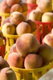 The Peach Tree Barnes 29 Best Peach Varieties Images On Pinterest Peaches Fruit Trees